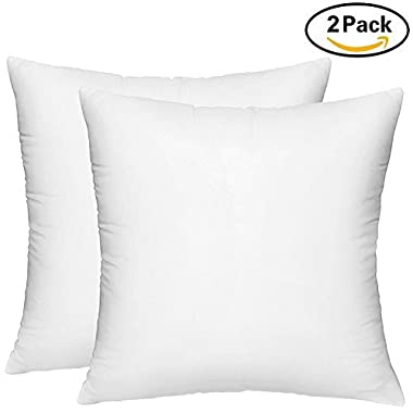 HIPPIH 2 Pack Pillow Insert - 18 x 18 Inch Hypoallergenic Decorative Square Sofa and Bed Pillow Form Inserts