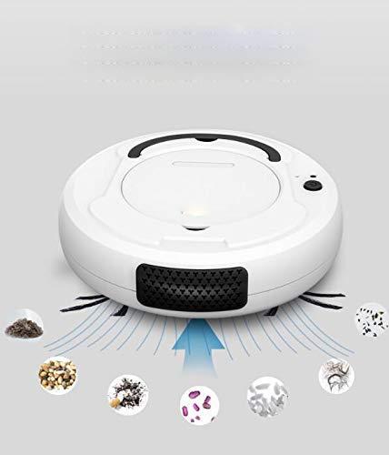 Nettoyant de sol intelligent multifonctionnel de l'aspirateur de robot, nettoyant à balayage hydraulé sec automobile rechargeable 3 en 1 WANGHN