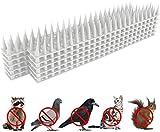 yomiro dissuasori per piccioni spuntoni anti piccioni scaccia piccioni uccelli veleno per piccioni allontanare i piccioni spaventapasseri dissuasori per gatti 3.6m (bianca)