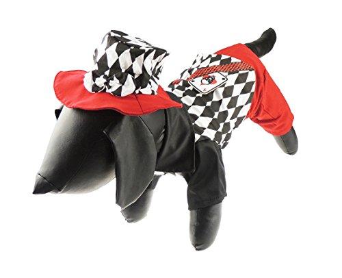 Glamour Girlz grappige hond kat zwart & wit gelakt Vegas kaart haai outfit & hoed halloween kostuum