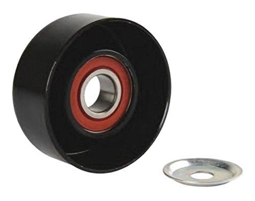Magneti Marelli 600000009880–Rodamientos