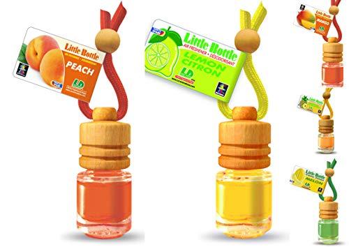 Duftmix SÜDFRUCHT-MIX 5 Duftflakons - je 1x Ananas Mango Melone Pfirsich Zitrone a 4,5ml Autoduft