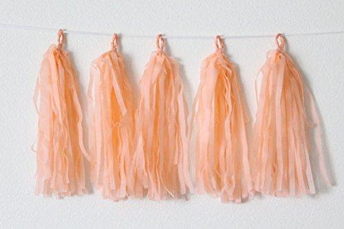 Tissue Paper Tassel Garland Bunting Party Wedding Birthday Party DIY Pom Poms Decor (Peach)