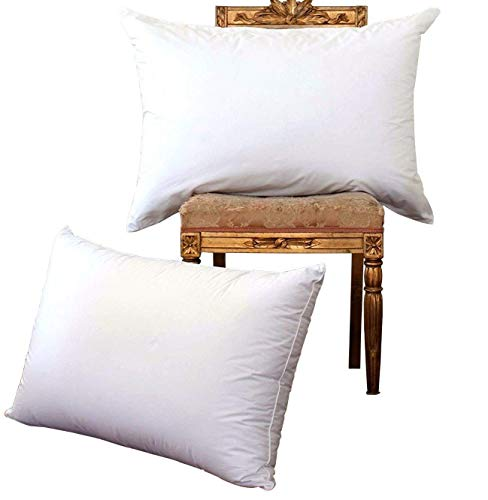 NP Luxury White Goose Down Pillow review