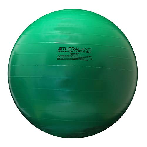 10 best exercise ball 65cm red for 2021