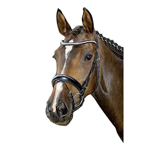 HKM Emilia - Brida para caballo (talla de sangre completa), color negro