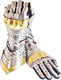 Queen Armour Medieval Articulated Gauntlets Gloves with Brass Work Silver, Stander