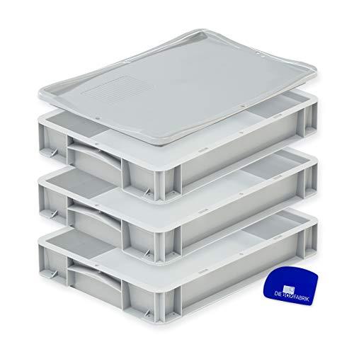 DIE BOX FABRIK Pizzaballenbox mit Deckel (40 x 30 x 7 cm) Kunststoffbehälter für Pizzateig, Stapelbehälter, Teigwanne, Gärbox, Teigbox (3 Boxen mit 1 Deckel)