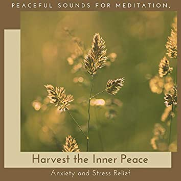 Harvest The Inner Peace - Peaceful Sounds For Meditation, Anxiety And Stress Relief