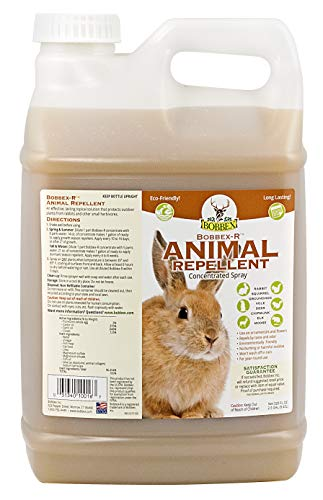 Bobbex Animal Repellent Concentrate Rabbit, Squirrel, and Chipmunk Repeller (2.5 gal.) DV-20HW-YGV7