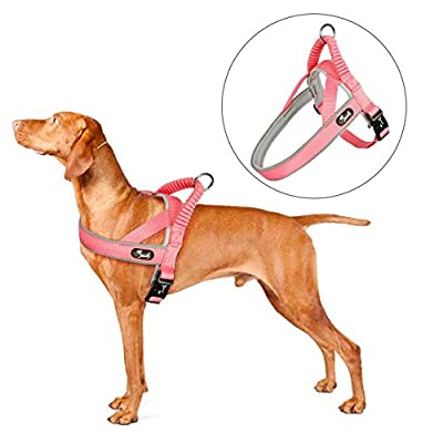 Pettom Dog Halter Reflective Step-in Harness Heavy Duty Adjustable Padded Safety Nylon Puppy Pet Outdoor Walking Training Vest
