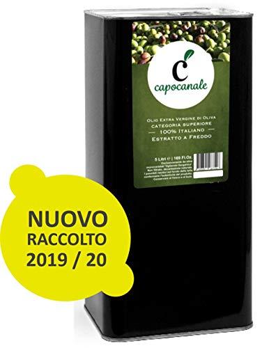 CAPOCANALE Olio Extravergine di Oliva | Estratto a Freddo, 100% Italiano, Puglia | 5 Litri