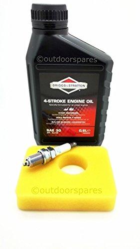 Briggs & Stratton Rasenmäher Service Kit passend für Motor Modelle 450E, 500E und 550E