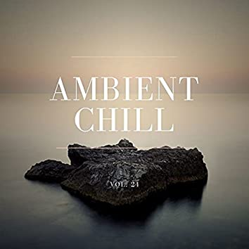Ambient Chill, Vol. 24
