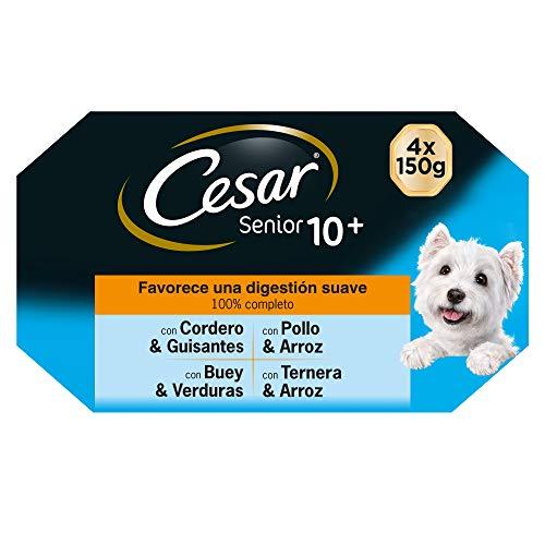 Cesar Multipack de Tarrinas de Comida Húmeda para Perros Senior, Selección Carnes Mixtas (Pack de 6 x 4 tarrinas x 150g)