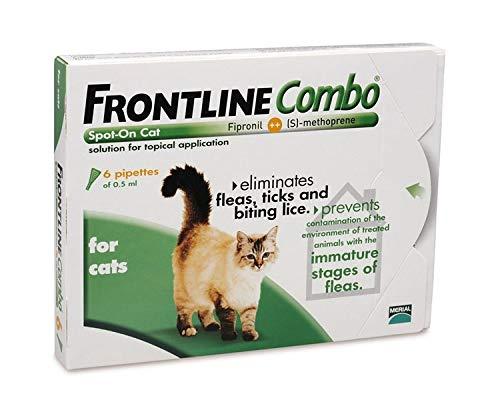 Frontline Combo Gato (3 Pipetas)