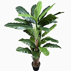 Silk Banana Leaf Tree in Pot, Overall Product Weight: 34 lb., Base Type: Pot