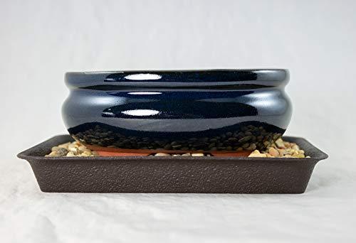 5.5' Dark Blue Oval Mame Shohin Bonsai / Succulent Pot + Tray + Rock + Mesh Combo