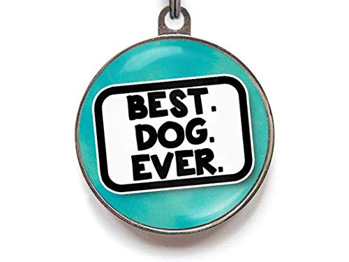 Wag-A-Tude Tags Best Dog Ever - Funny Pet ID Tag - Personalized Reverse - 36 Color Options (Large)