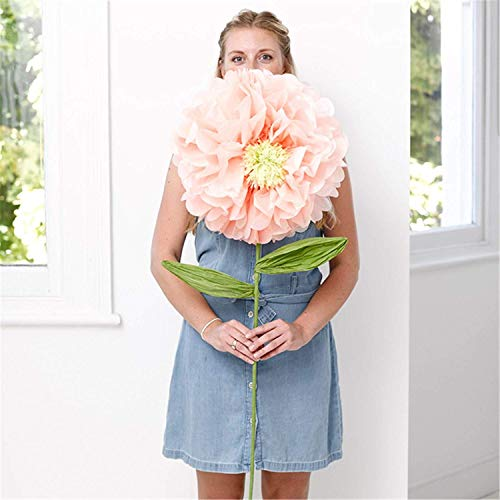 Talking Tables Decadent Decor 3.6Ft Crepe Paper Flower Decoration with Centre Detail for A Summer Party Or Your Home Décor, Peach