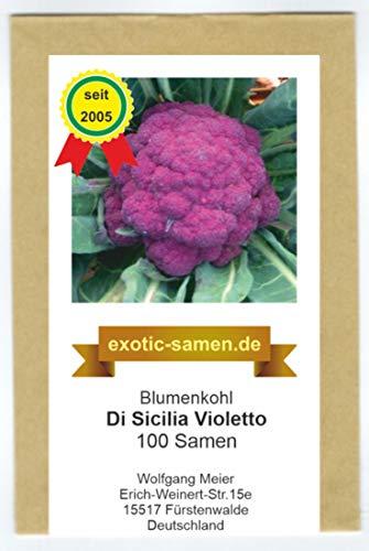 Blumenkohl - violett - schnellwüchsig - Di Sicilia Violetto - ca. 100 Samen