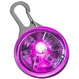 Smartfox LED Anhänger Leuchhaltsband Leuchanhänger Hundehalsband Halsband Schlüsselbund Blinkie inkl. Batterie - Pink