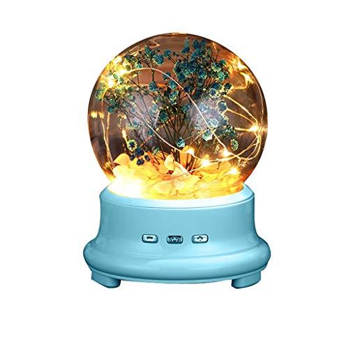 JJZXD Lámpara de Botella LED conservada Flor en cúpula de Vidrio, luz de Noche Altavoz Bluetooth Lámpara de música Luz de Noche Altavoz (Color : B)