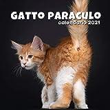 Gatto paraculo - calendario 2021: Un regalo divertente per adulti, uomini, donne, amici che amano i gatti Natale e Capodanno: da parete o da scrivania