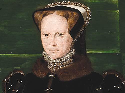The Tudor Conquest of Ireland