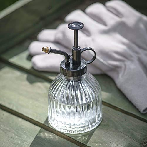 CKB LTD 350 ml vidrio Water Mister – Botella de pulverizador de interior clásica con bomba de plástico transparente para plantas de aire, orquídeas y más