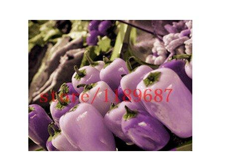 1bag = 100 pièces douces graines de poivre pourpre graines géant chili rares graines de légumes piment en pot Bonsai Plante en pot Graines