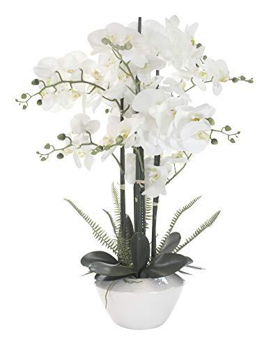 Decoline Kunstpflanze Orchidee XXL mit Keramiktopf - ca. 70cm hoch (weiß)