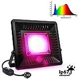 Relassy Lampe de Plante COB LED Lampe Horticole 50W à Spectre Complet avec Fiche EU de 1,7 m, IP67 Imperméable Lumière Croissance pour Culture Hydroponique, Plantes d'intérieur et de Serre