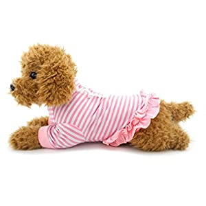 Ranphy Petit Chien T-shirt d'été Vêtements pour chien femelle rayé pour femme Bordure en dentelle Ourlet plissé d'été