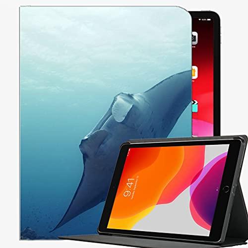 Estuche para el Nuevo iPad 10.2 2020/2019 - Cubierta de la Caja de generación del 8vo / séptimo del iPad, natación de Gato Caja de Pescado bajo