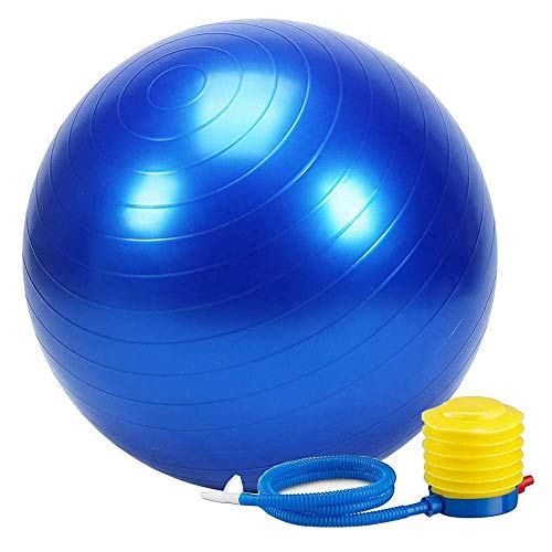RYLAN Anti-Burst Exercise Gym Ball 75cm with Pump, Anti-Slip Balance Stability Ball, Heavy Duty Fitness Yoga Ball, Extra Thick Swiss Birthing Ball, Excersice Equipment for Home, Exercise Ball-