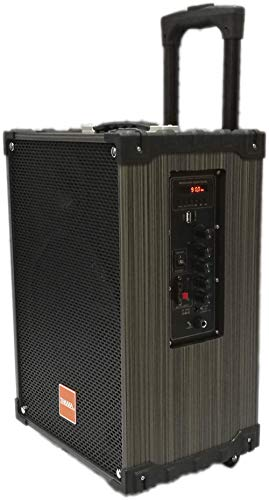TAKARA Karaoke Speaker T-9110 Portable Trolley 10 Inch Woofer Multimedia Bluetooth Speaker, with Audio Recording, Rechargeable Battery, USB,TF, PA System with 2 Wireless Mic Outdoor Wooden Speakers