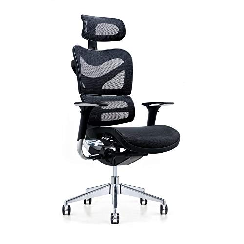 Poly and Bark Inverness Ergonomic Office Chair in Mesh, Black