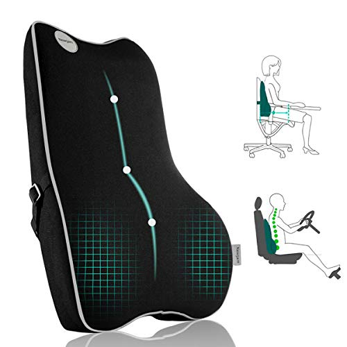 Lumbar Support Pillow,Pure Memory Foam Back Cushion Orthopedic Backrest with Breathable 3D Mesh for Car Seat,Office Chair,Computer Chair,Wheelchair and Recliner.Ergonomic Design for Back Pain Relief.
