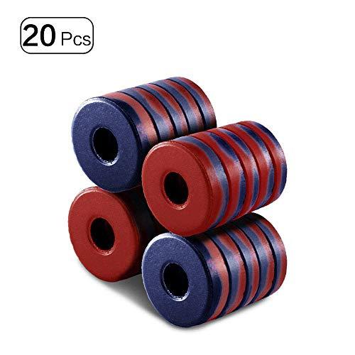 Imanes de anillo redondo con disco de agujero fuerte para proyectos educativos de la escuela, 20 unidades