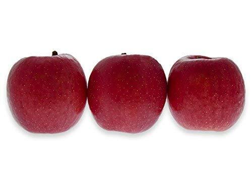 フルーツなかやま サンふじ リンゴ 13個入 糖度12度以上 1個350g以上 幅8cm高さ8cm以上 東京都卸売市場のリンゴ専門人が選んだ厳選品