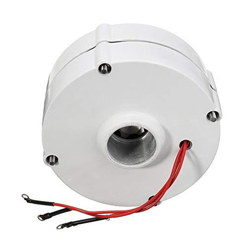 Motor 6000W MOTOR 12V 24V Turbina de viento Motor del generador para el controlador de la cuchilla de la turbina de viento de DIY Motor del alternador del generador de corriente 3 fase,24v