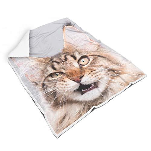 Twelve constellations Manta Angry Cat estándar de microfibra lujosa, universal, apta para mascotas para habitaciones con aire acondicionado para adultos, regalo blanco, 150 x 200 cm