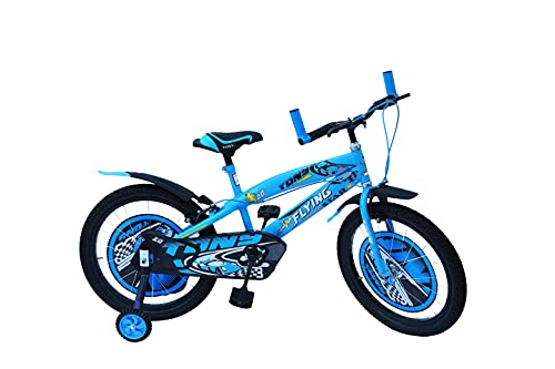 RAW BICYCLES Sports BMX Single Speed Tube-Less 20 inches Wheel, Steel...