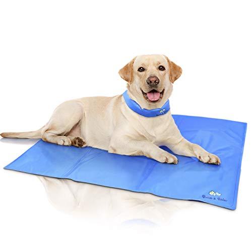 Bella & Ballu Alfombra refrescante para Perros y Gatos + Collar refrescante – La Esterilla refrigerante Protege a su Mascota del Calor – para Interior, Exterior y para el Coche (Tamaño L)