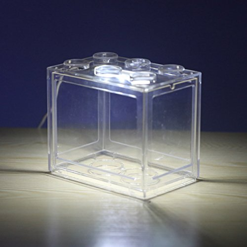Jo332Bertram Aquarium-Komplett-Set USB Mini Aquarium Fischbecken mit LED für Büro Desktop Hause Dekoration, Transparent