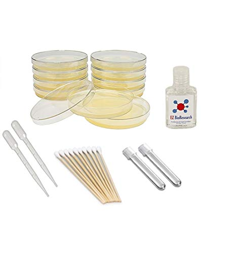 EZ BioResearch Bacteria Science Kit (I) : Pre-poured LB Agar Plates and Cotton Swabs, E-Book for Science Fair Project with Award Winning Experiments