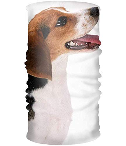 Sweatband Headband Animal Beagle Dog Helmet Liner Moisture Wicking Microfiber For Yoga, Hiking And Travel