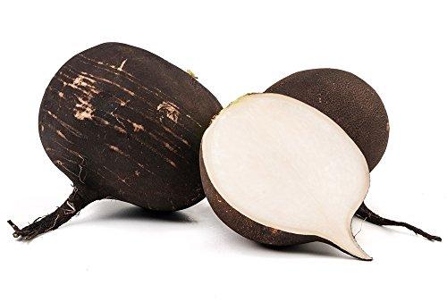 Graines de radis Noir Murzynka - Raphanus Sativus