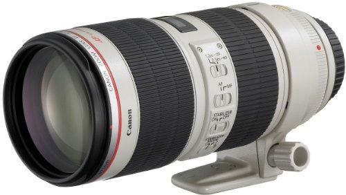 Canon EF 70-200mm F2.8 L IS II USM Telezoom-Objektiv (77mm Filtergewinde) schwarz